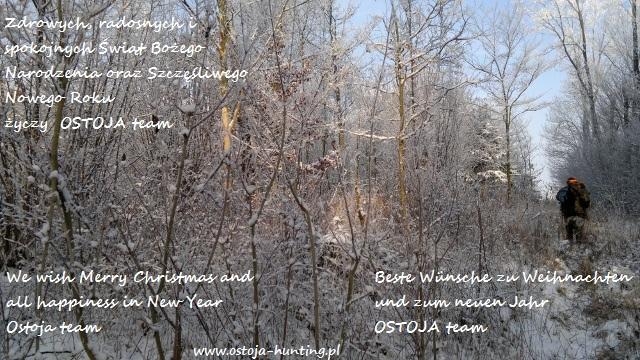 Frohe Weihnachten Jager.Frohe Weihnachten Aktualnosci Jagdorganisation In Polen